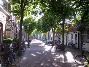 Dorpsstraat van Vlieland