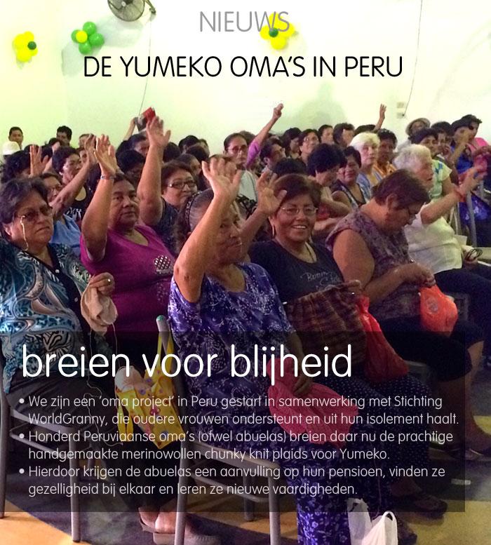 Yumeko Impact Report 2015