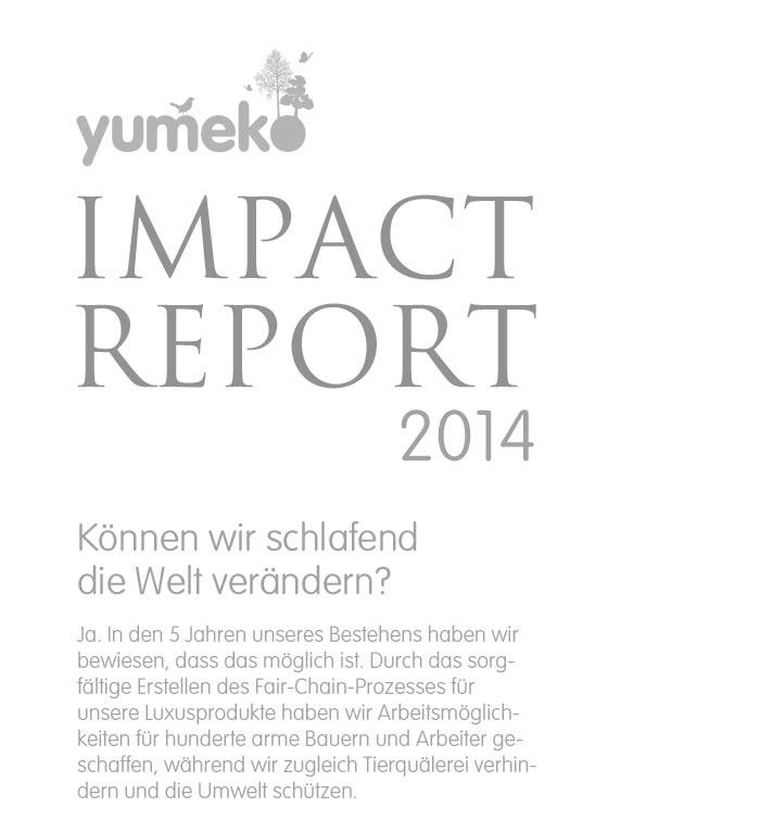 imact-report-sm-1
