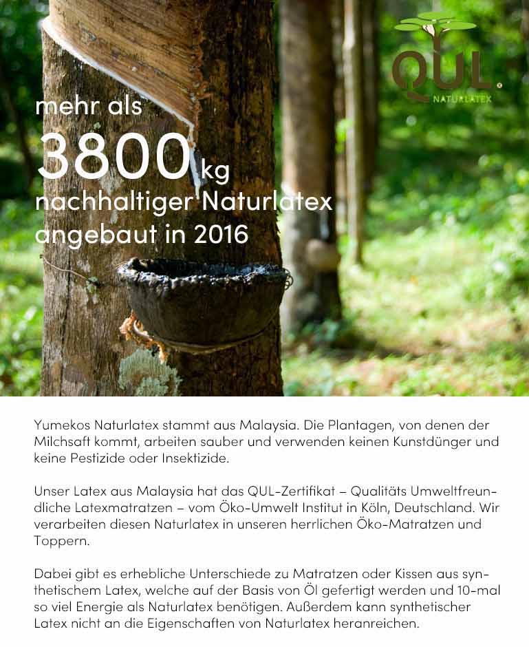 Impact report Yumeko 2016