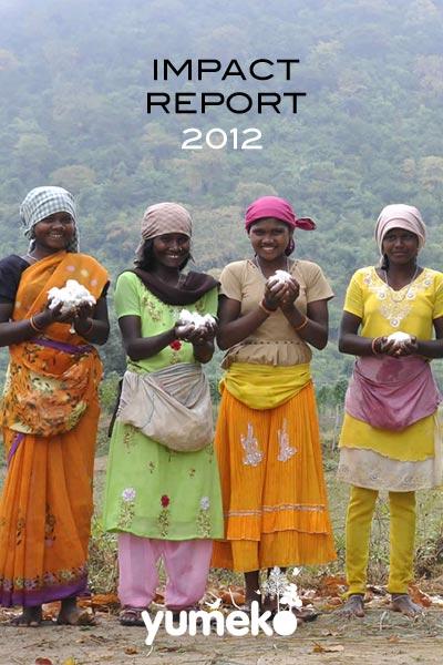Impact Report 2012