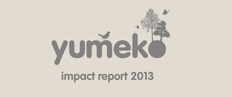 Yumeko Impact report 2013