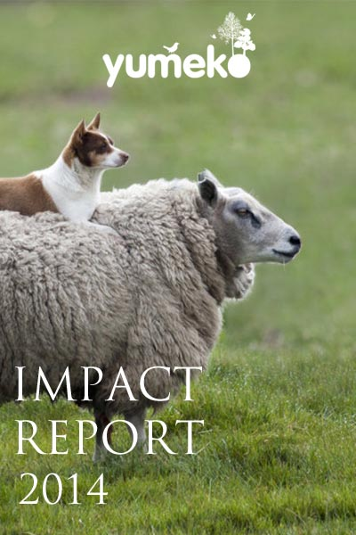 Yumeko Impact Report 2014